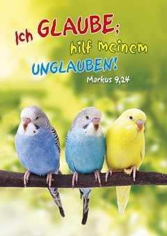 Jahreslosung 2020 - Postkarten, 4 Stück - Vögel